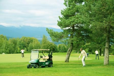 Inaugural Golf Tournament Collects Money for Scholarships